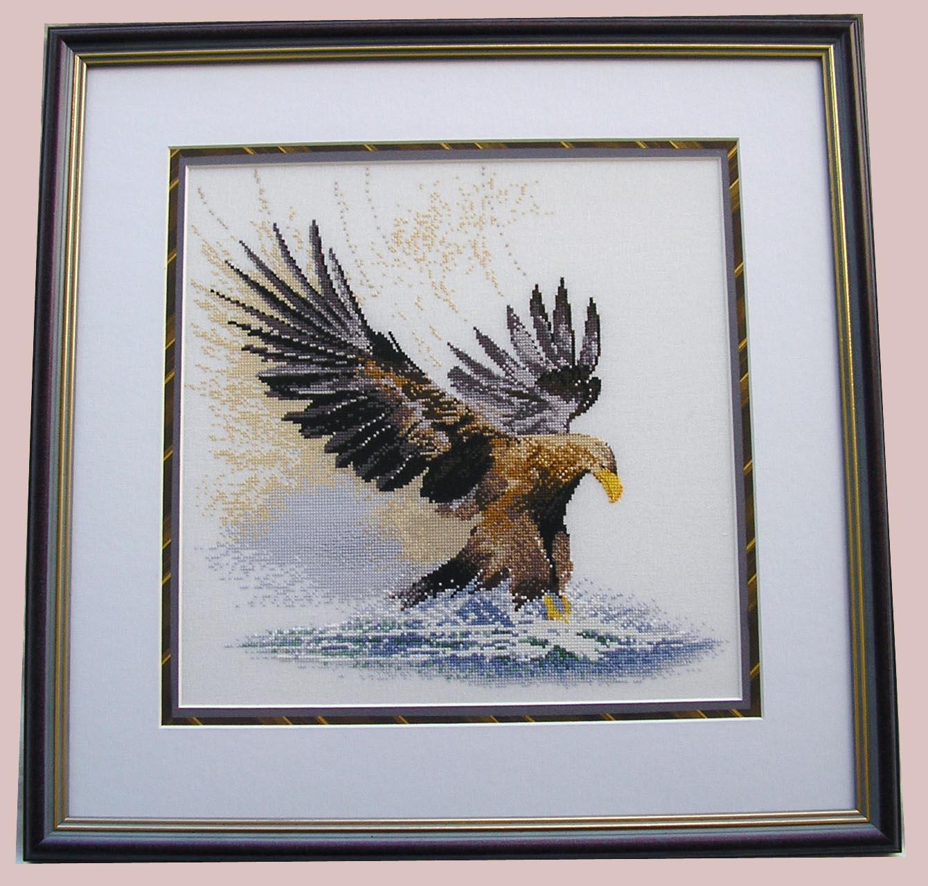 'Eagle in flight', Heritage . Птицы