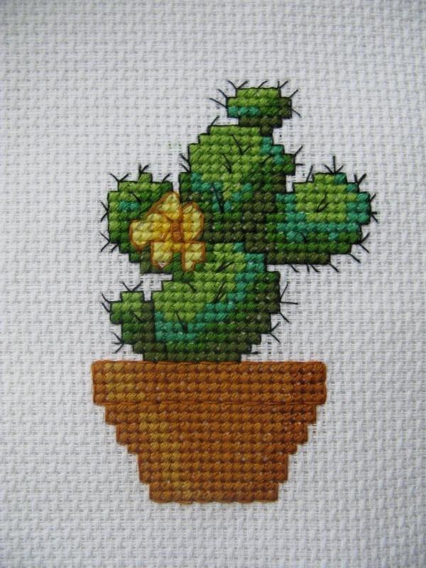 кактус. Растения (в основном цветы)