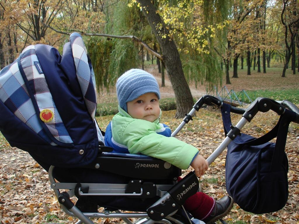 Первая осень Моего Сынульки!. Дети в колясках