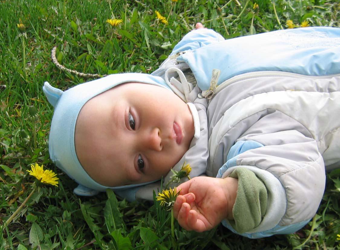Юный ботаник. Маленький Тарзан