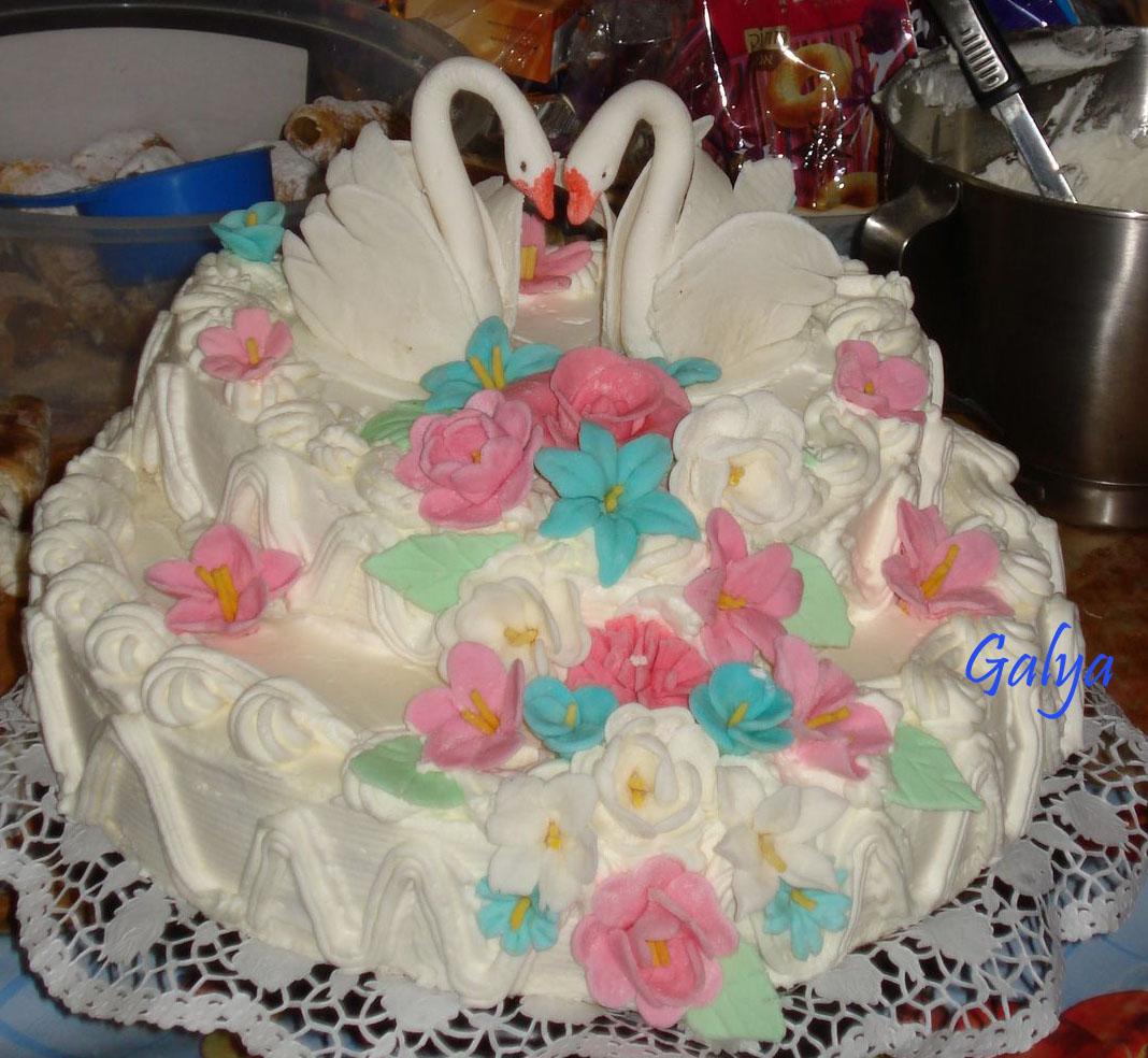 Лебеди. Кулинария: торты и пирожные