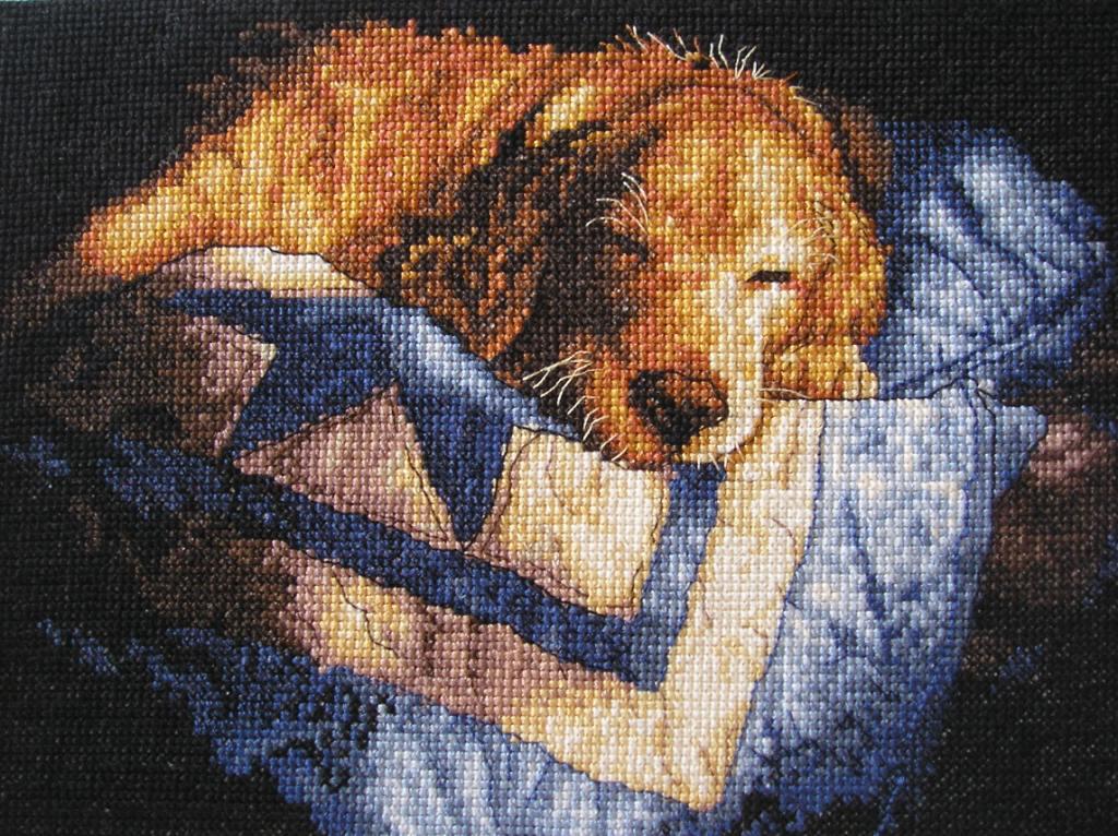 'Спящий щенок' от Dimensions. Животные