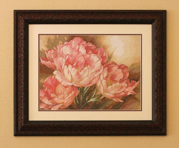 Dimensions - Tulip Trio. Растения (в основном цветы)