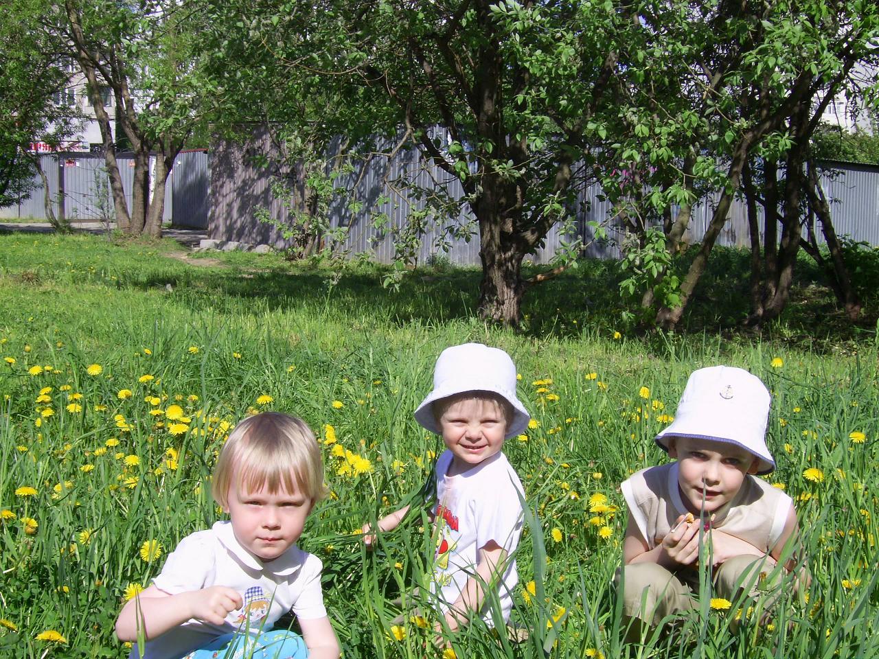 Лютики-цветочки. Маленький Тарзан