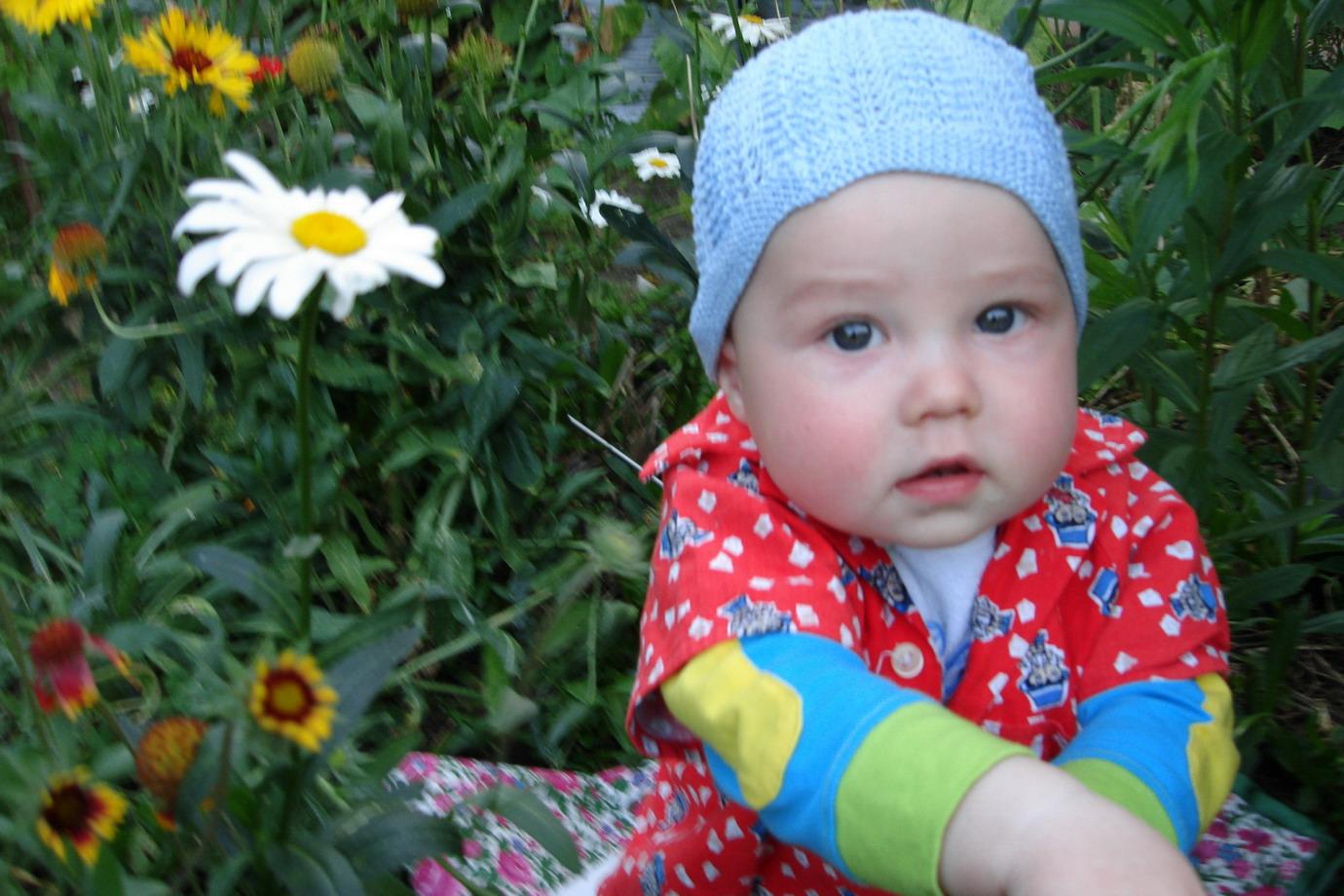 Лютики,цветочки у меня в садочке.... Маленький Тарзан