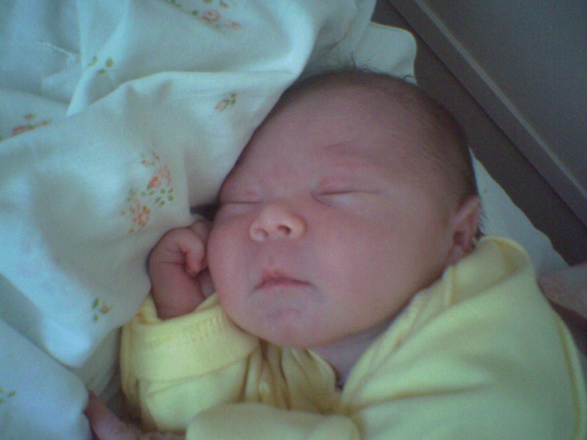 24 часа после рождения. Новорожденные