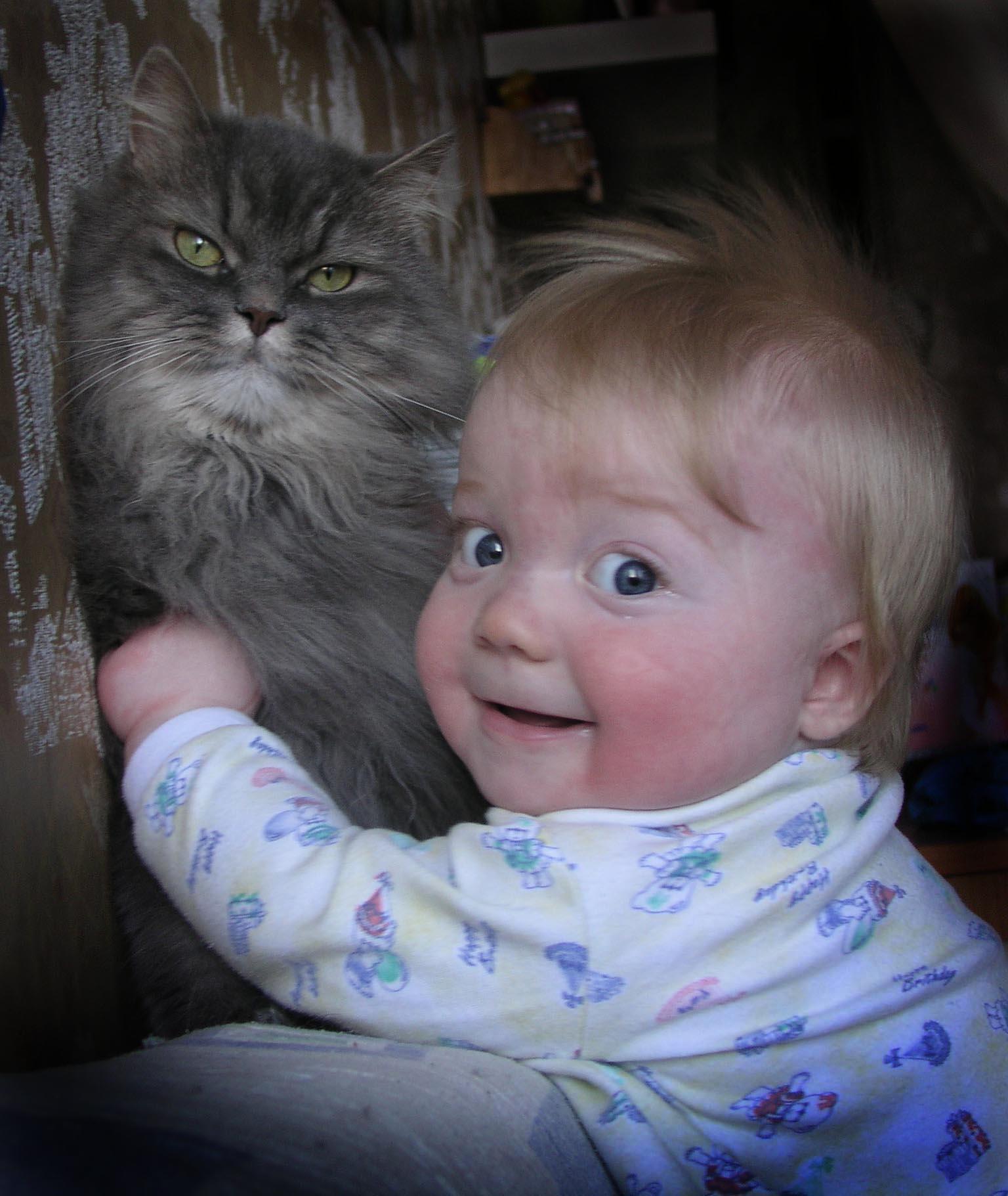 МОЙ ПУШИСТИК!. Закрытое голосование фотоконкурса 'Ребята и котята'