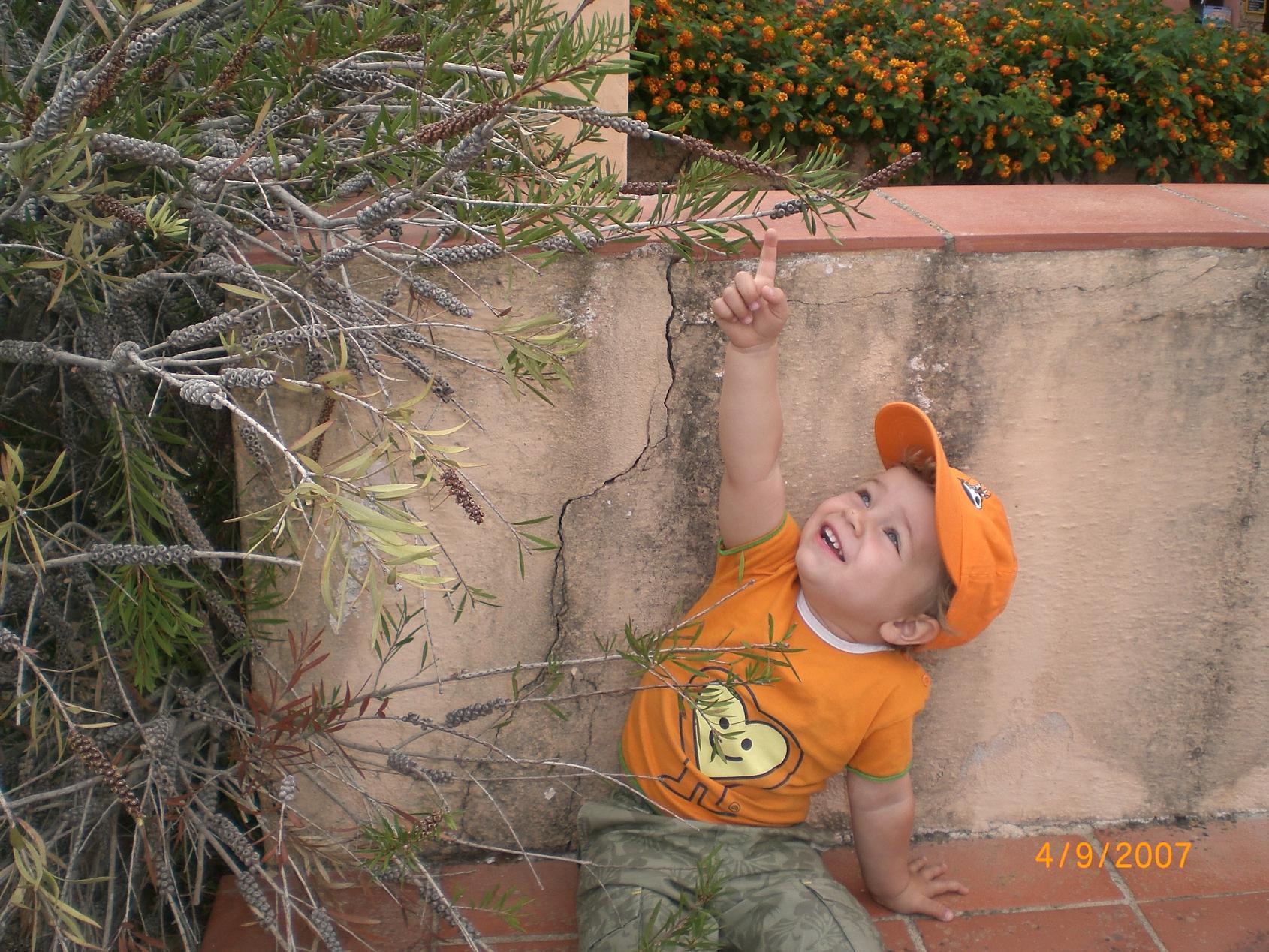 Оранжевое лето. Маленький Тарзан
