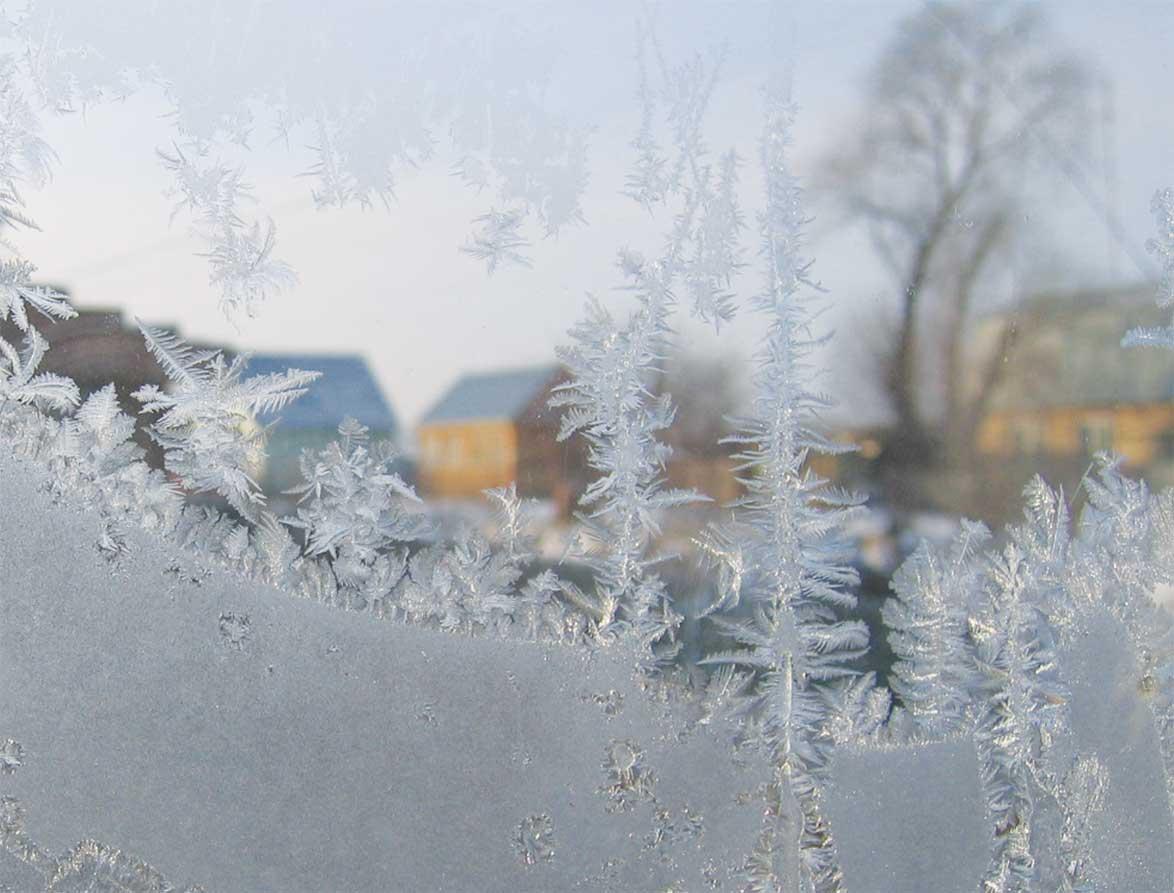 Зима 2008. Зима за окном