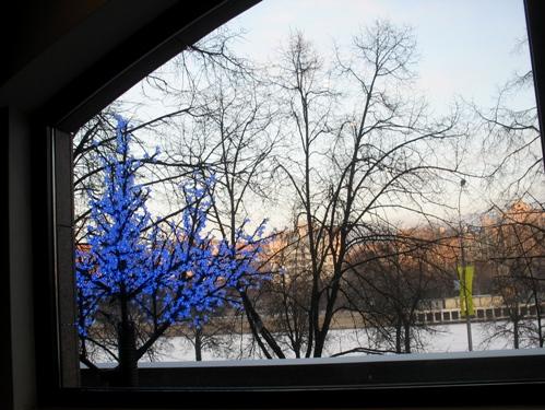 вид из окна. Зима за окном