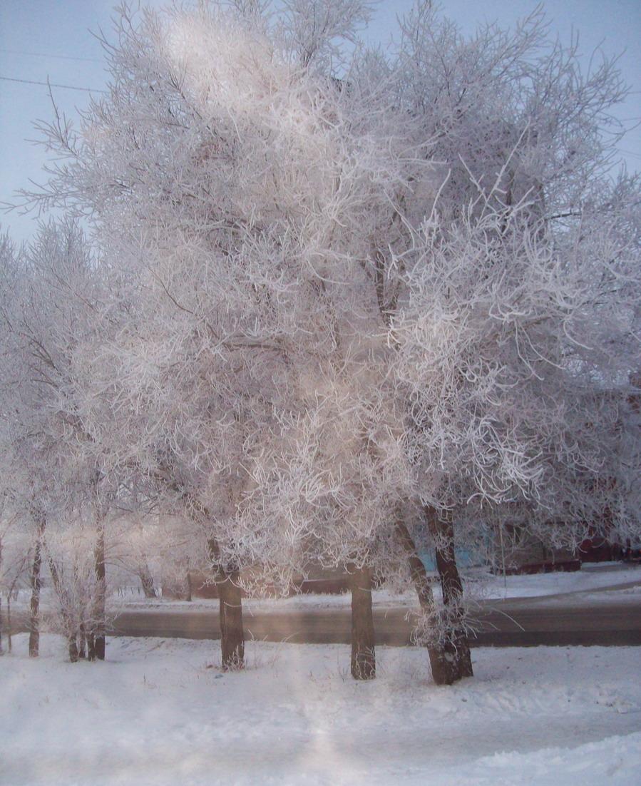 Зимнее утро!. Зима за окном