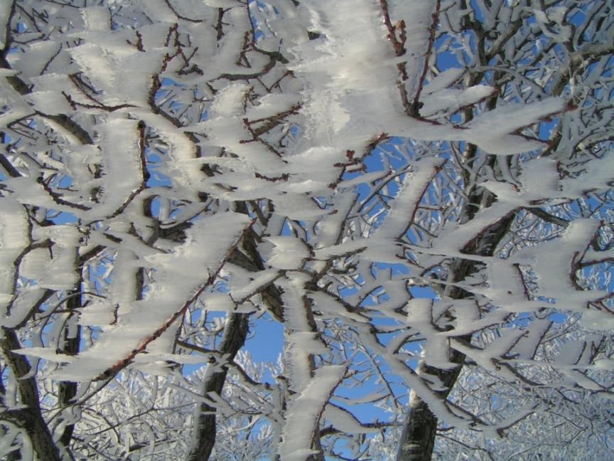 Ледяные узоры. Зима за окном