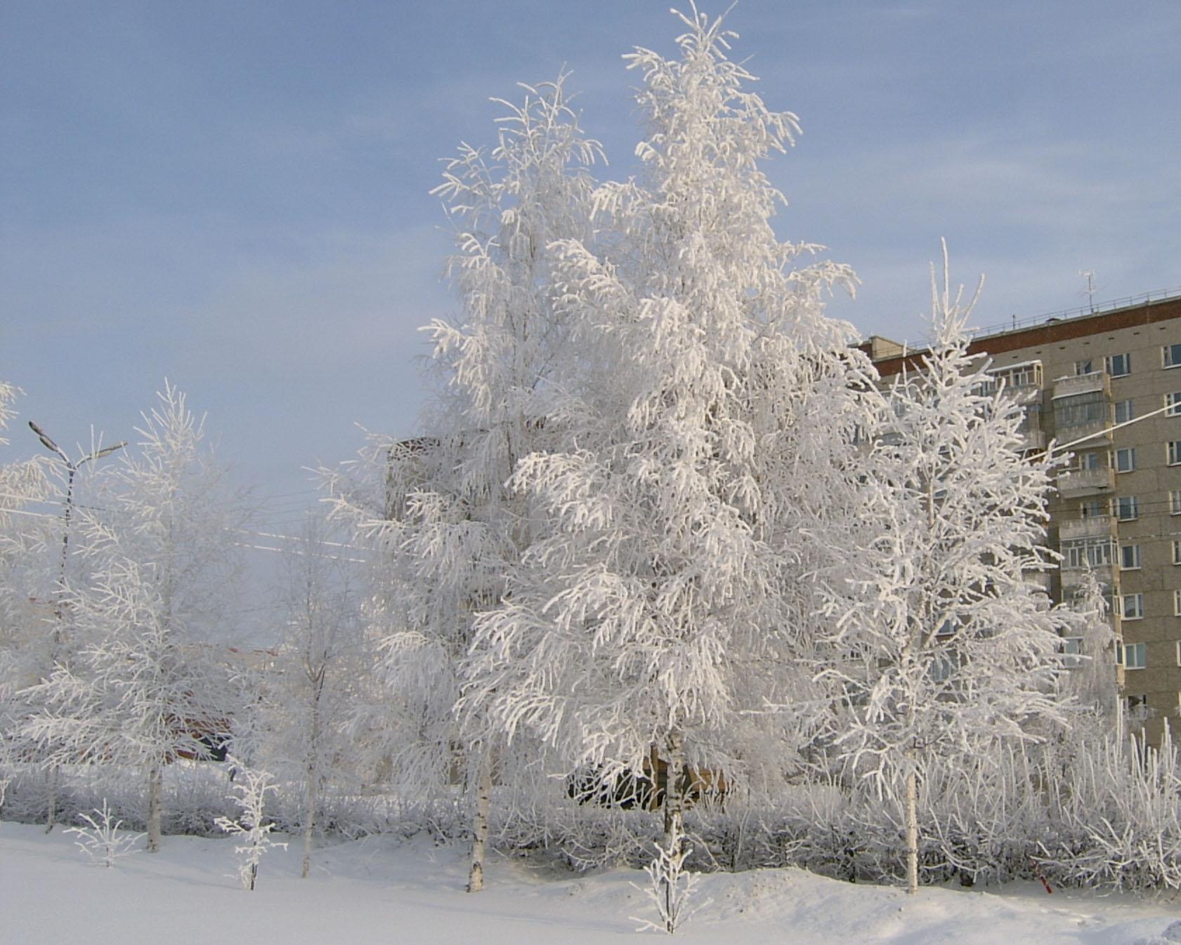 Зима в Ижевске . Зима за окном