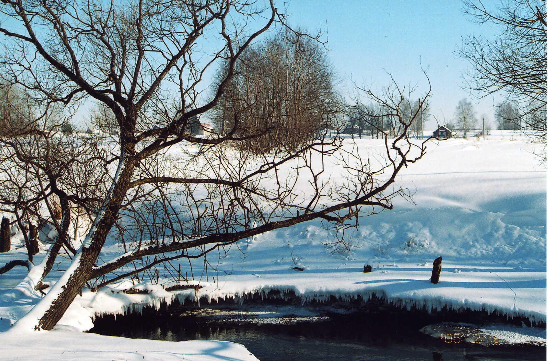 Зимний день. Зима за окном