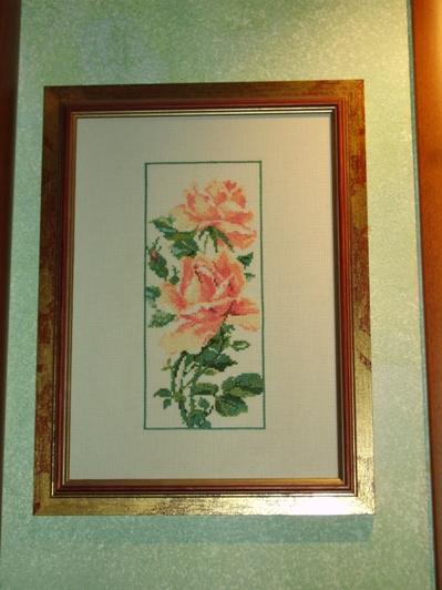 Роза для Оли, 2007 г.. Растения (в основном цветы)