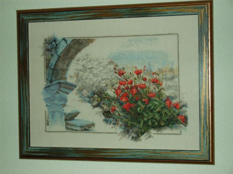 Развалины, 2006 г.. Растения (в основном цветы)