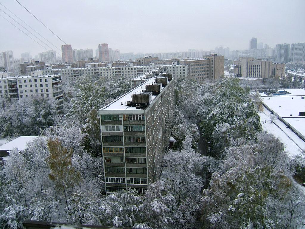 Из окна. Зима за окном