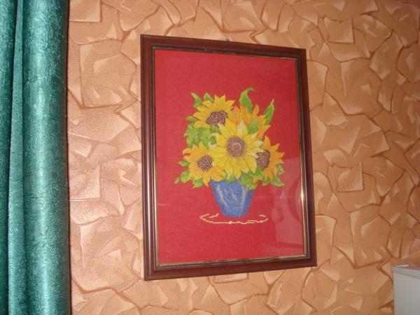 Подсолнухи. Растения (в основном цветы)