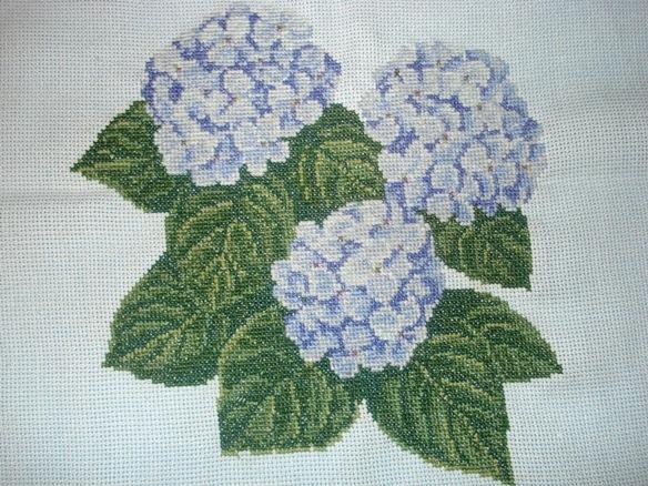 Гортензии . Растения (в основном цветы)