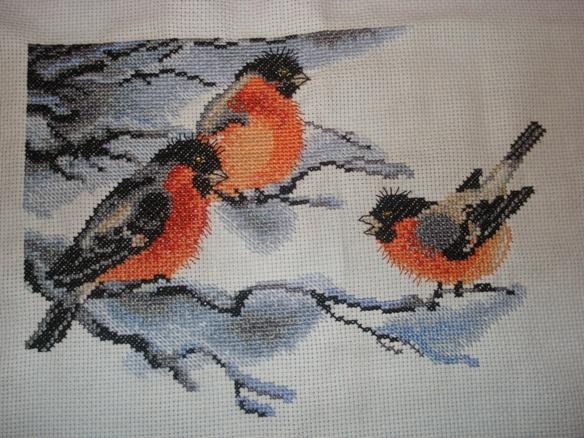 Снегири. Птицы