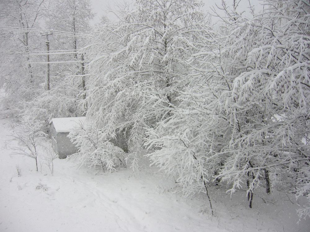 Всё в снегу. Зима за окном