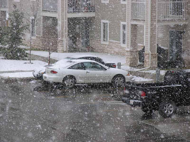 После оттепели в Калгари снова идет снег..... Зима за окном