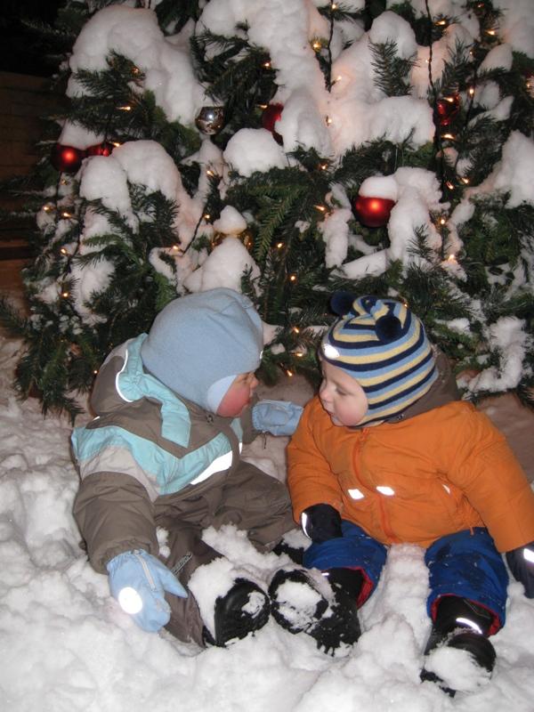 верные друзья!. Зимние забавы