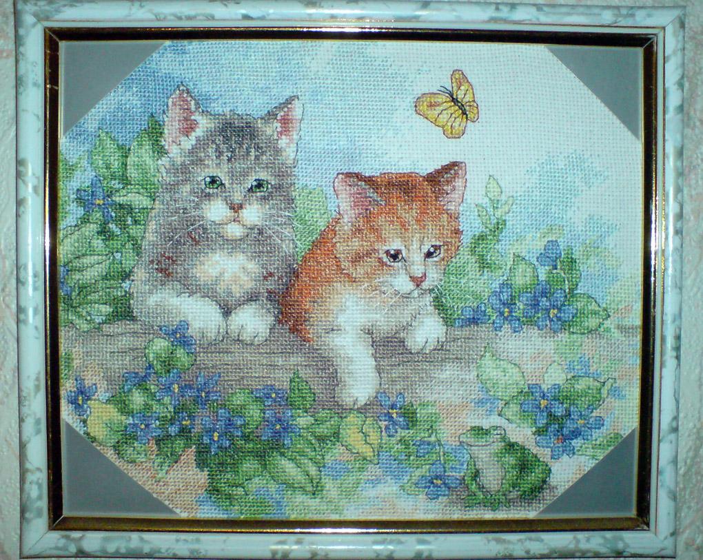 Playful Kittens. Животные