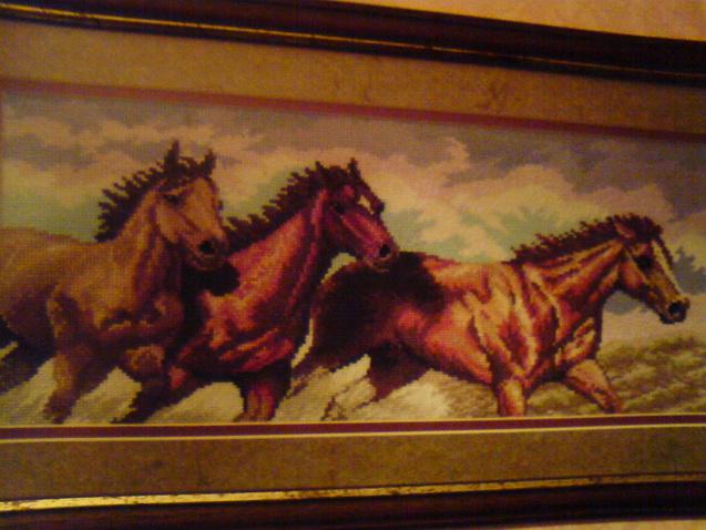 лошади. Животные