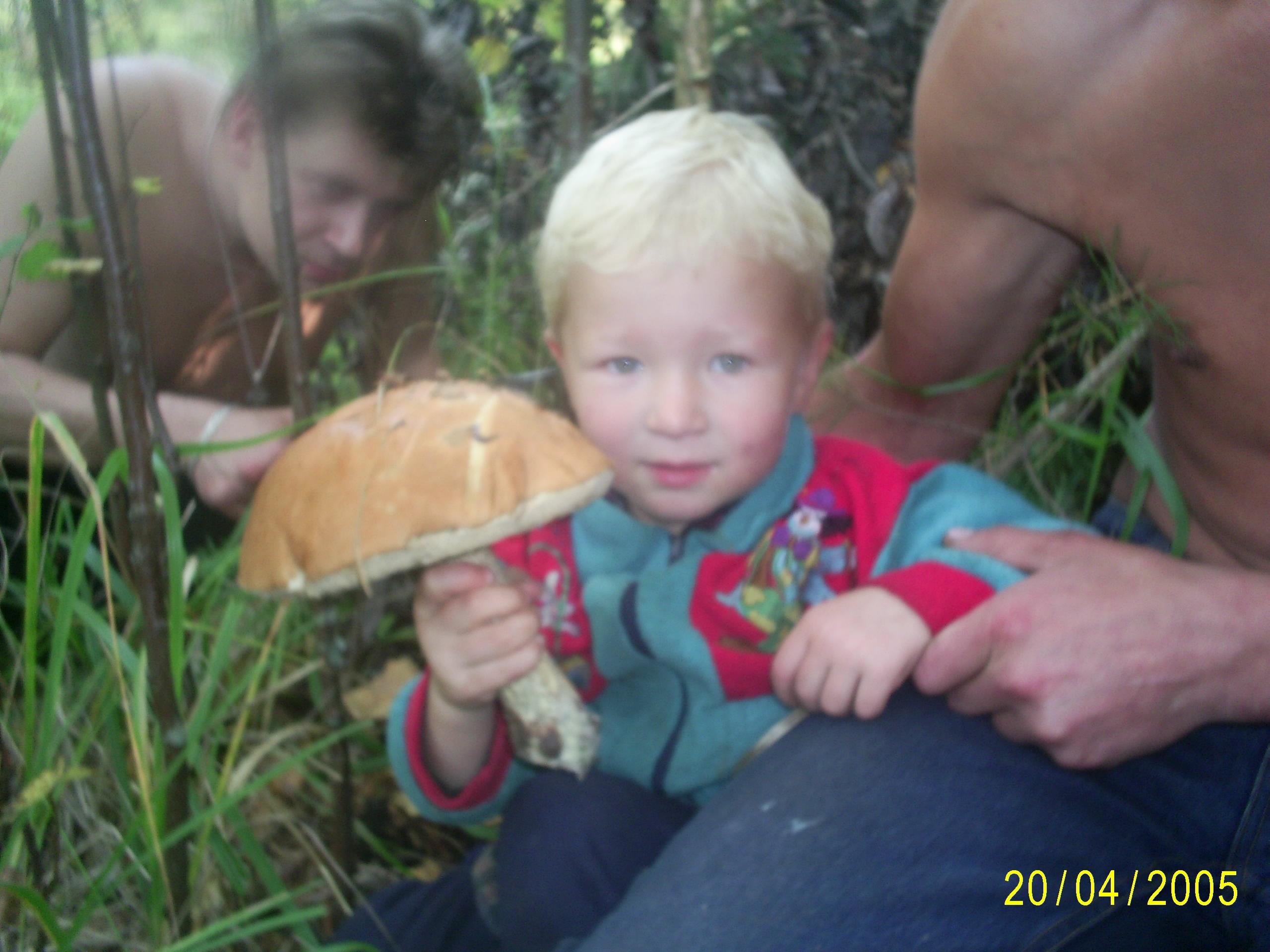 Грибник!. За грибами!