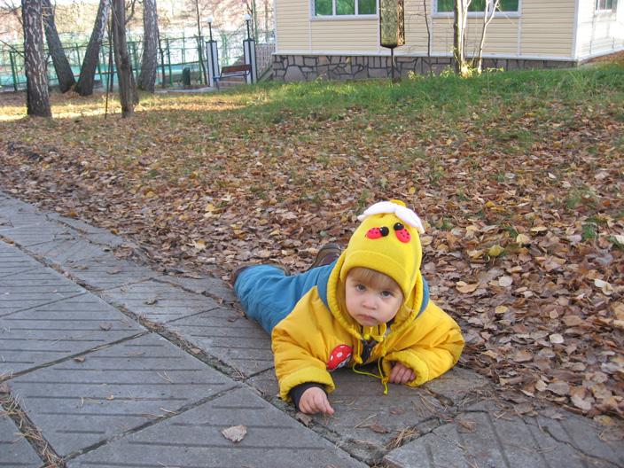 Осенний лист.... Отдых на природе