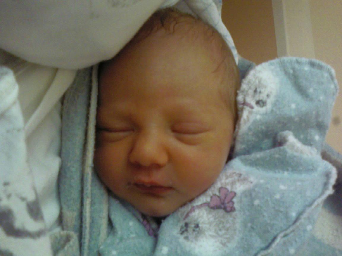 Малявок. Новорожденные