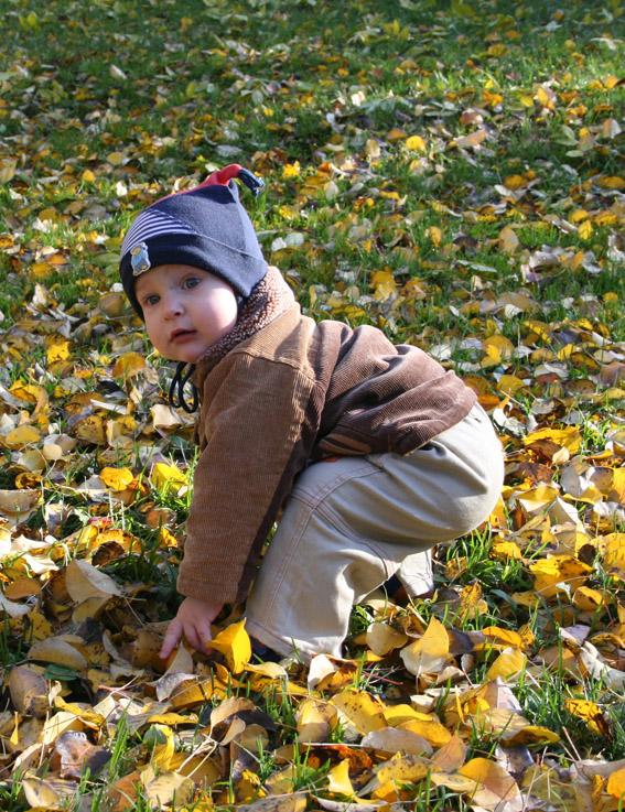 Осенняя прогулка. Дети: художественное фото
