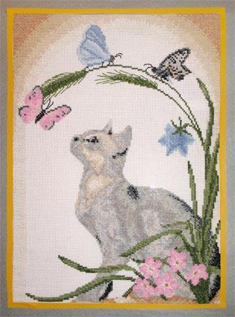 040_котик с бабочками. Животные