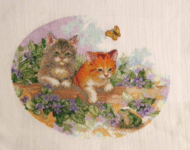 043_котята и лягушка. Животные