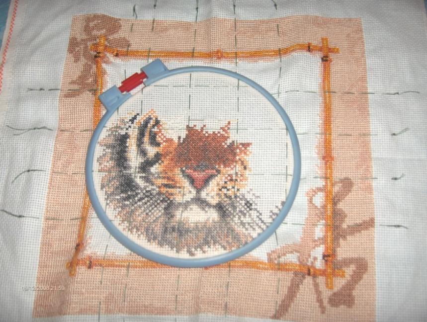 Уссурийский тигр. . Восток, иероглифы