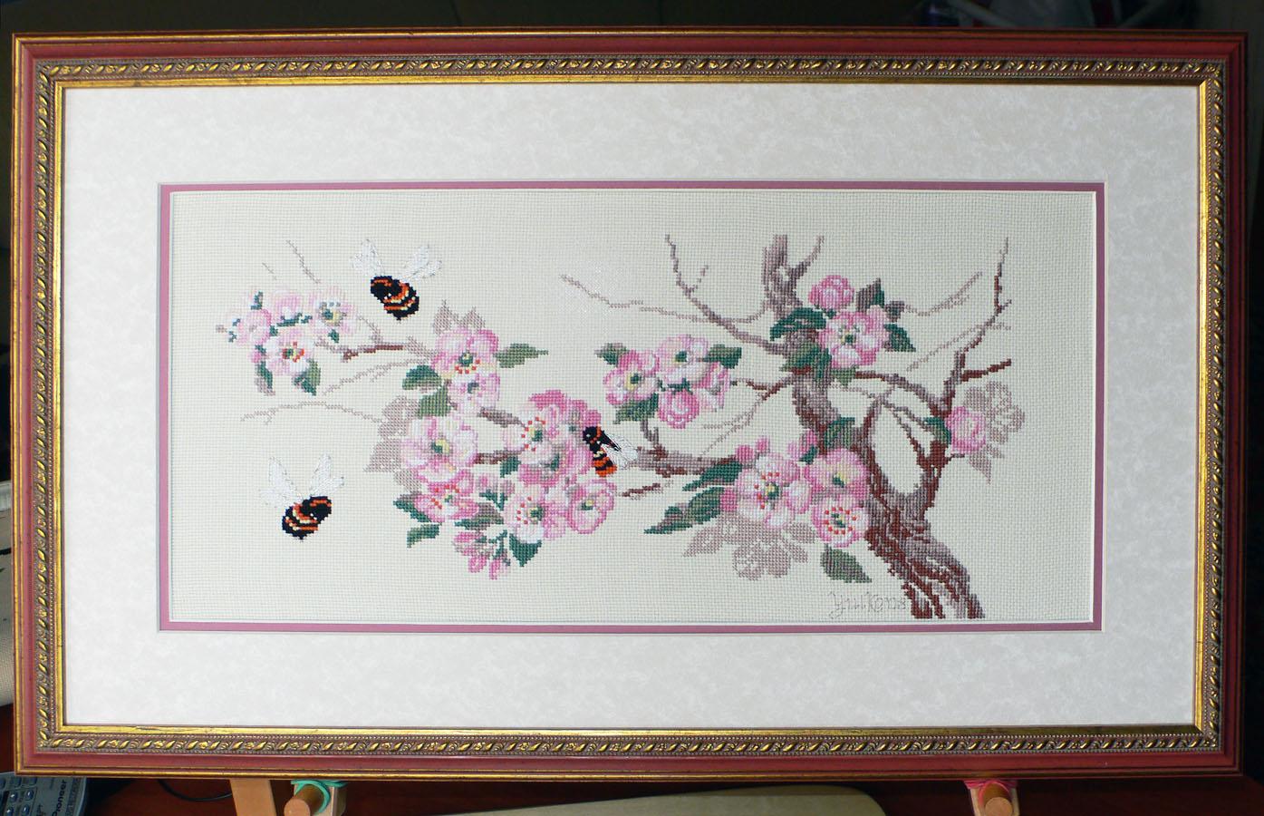 Ветка яблони. Растения (в основном цветы)