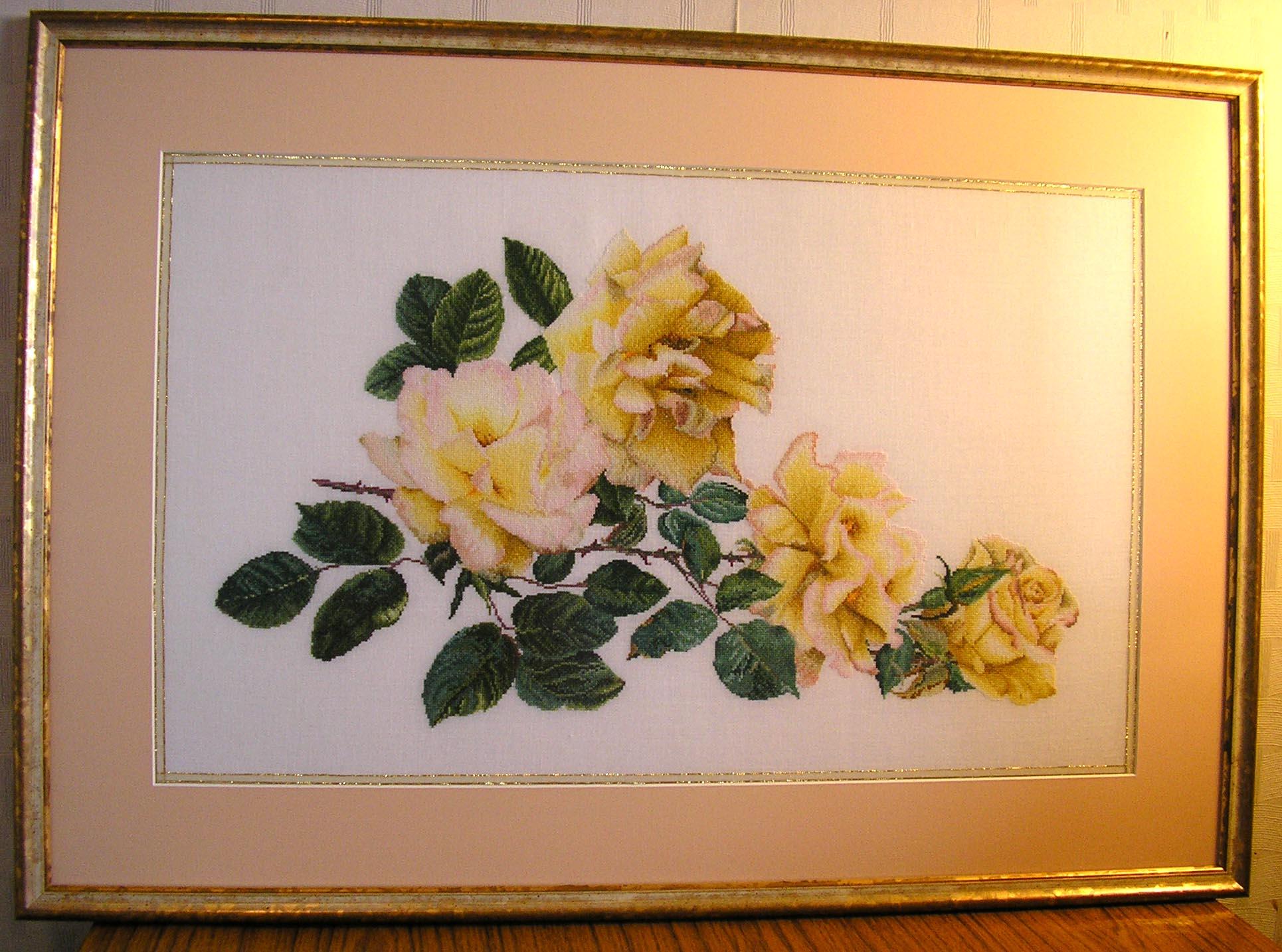 'Желтые розы' , набор Thea Gouverner №429 . Растения (в основном цветы)