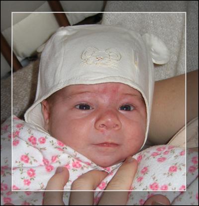 Севка. Новорожденные