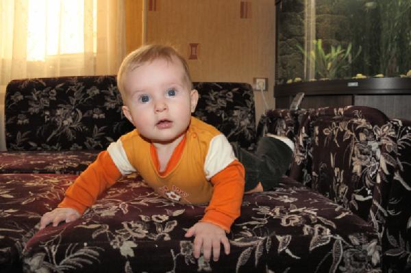 6 месяцев. Малыши