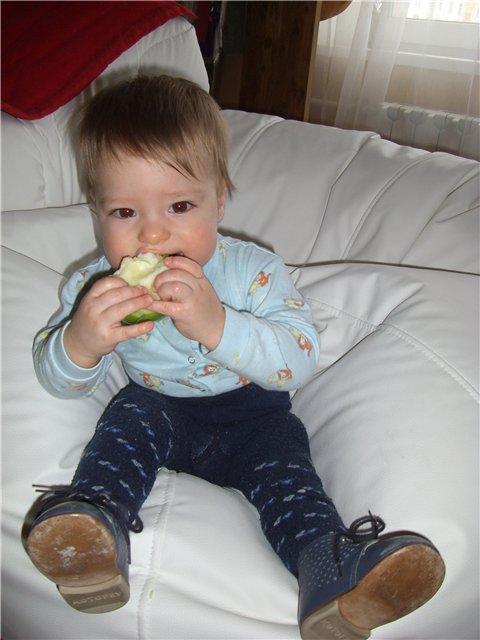 Какое вкусное яблоко:). Малыши-грызуны