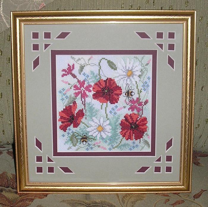 Пастельные маки. Растения (в основном цветы)