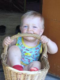 корзина для мальчика. Малыши-грызуны