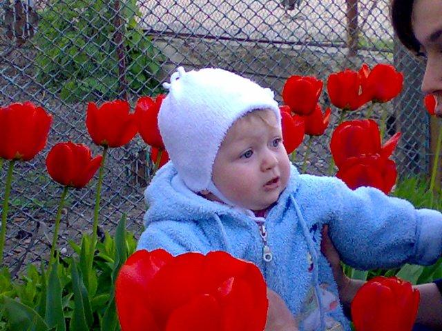 Лизка!. Цветы жизни