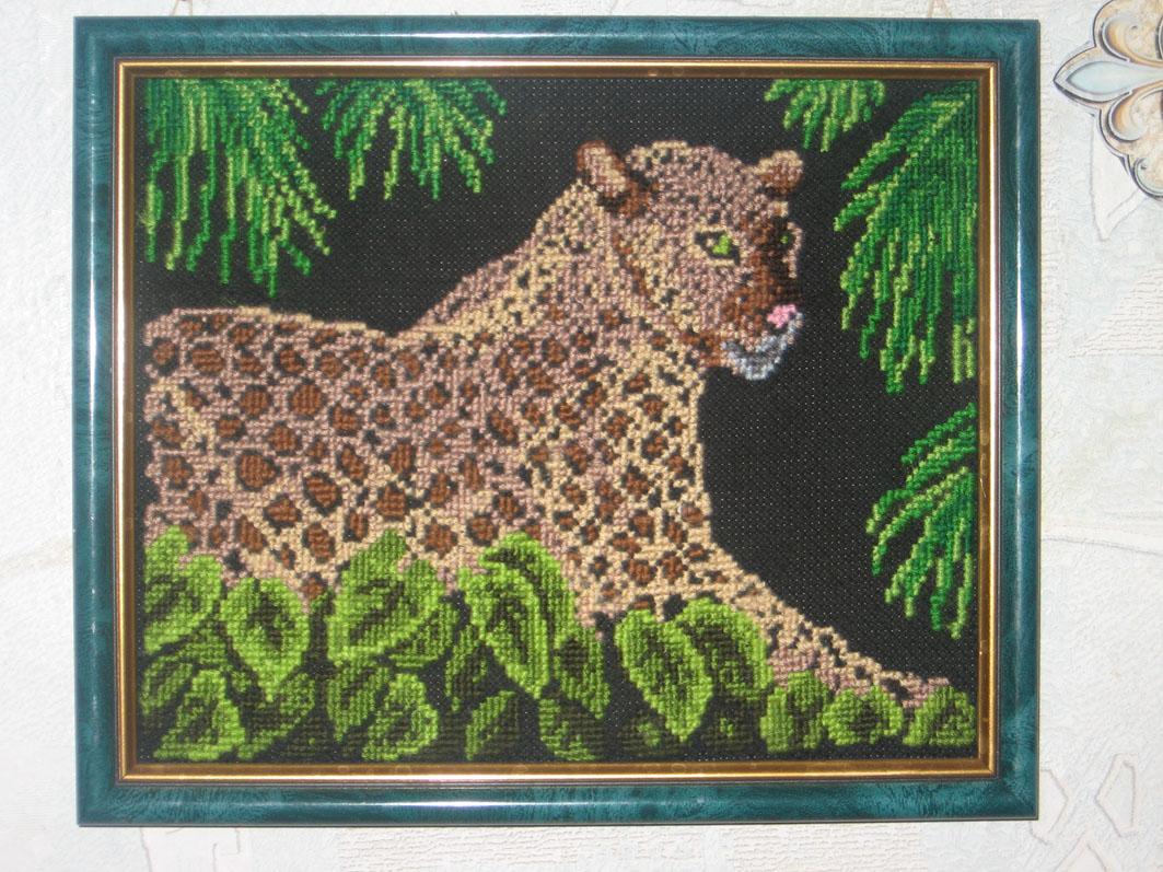 Леопард. Животные