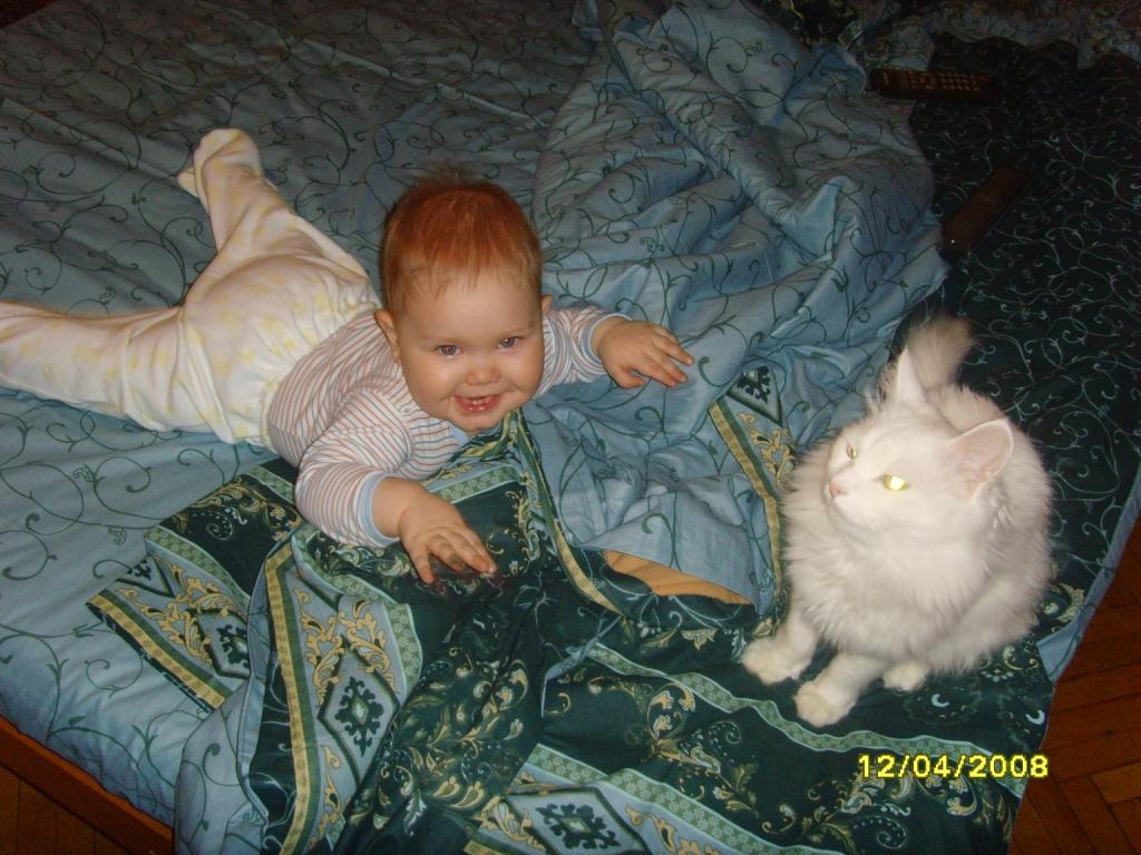 играем с котом. Ребята и зверята