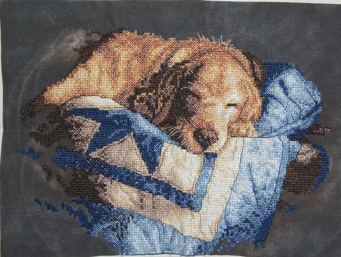 Сон. Животные