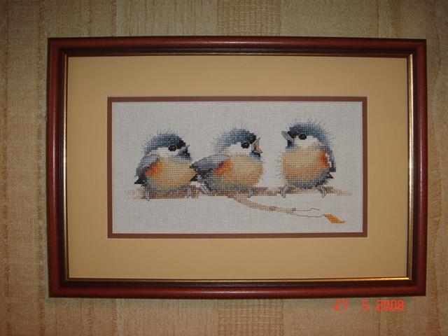 Птички-3 (и по количеству и по счёту). Птицы