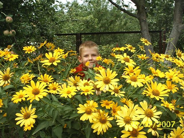 Дети-цветы жизни. Отдых на природе