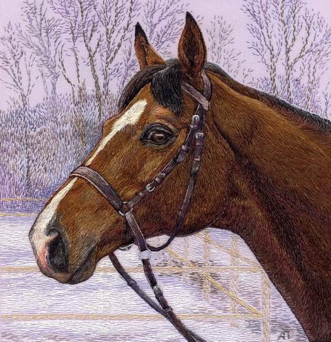 Спортивная лошадь. Животные